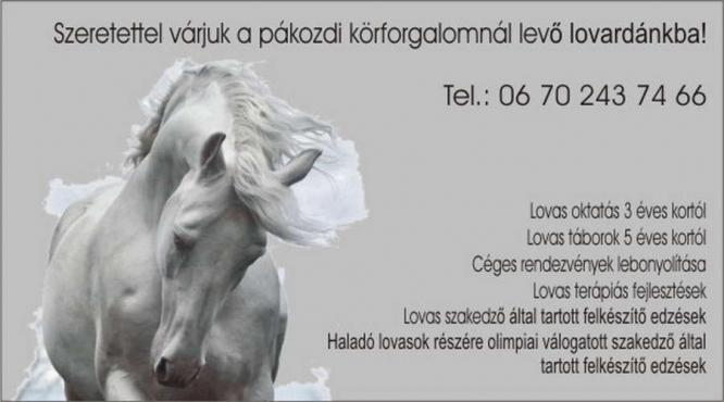 Molnár Kármen Classic Horse Kft.