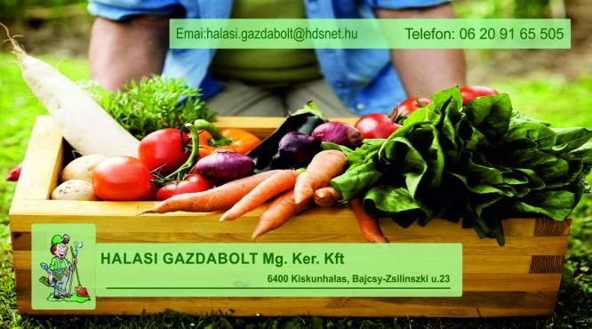 Halasi Gazdabolt Kiskunhalas